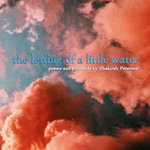 the letting of a little water Shakirah Peterson Book Description